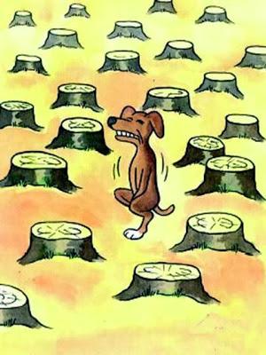 Deforestation88988888712