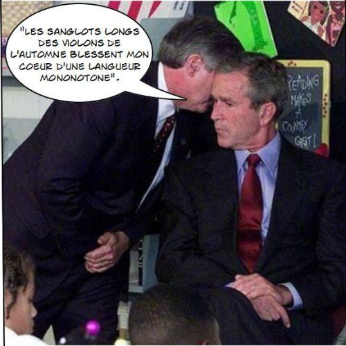 Caricature Bush